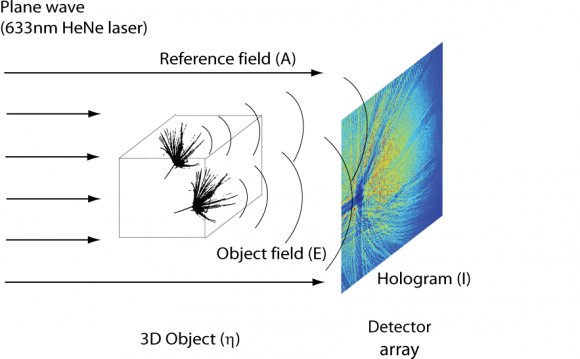 Compressive Holography