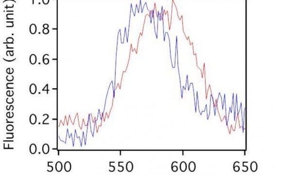 (a) Zero-order diffraction